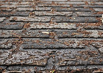 signs you need a new roof 2015
