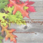 Fall Into Winter Home Improvement Savings!