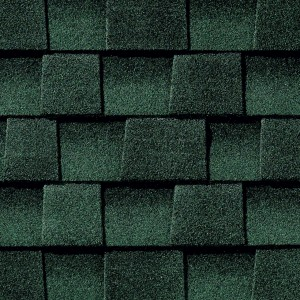 bold roofing colors
