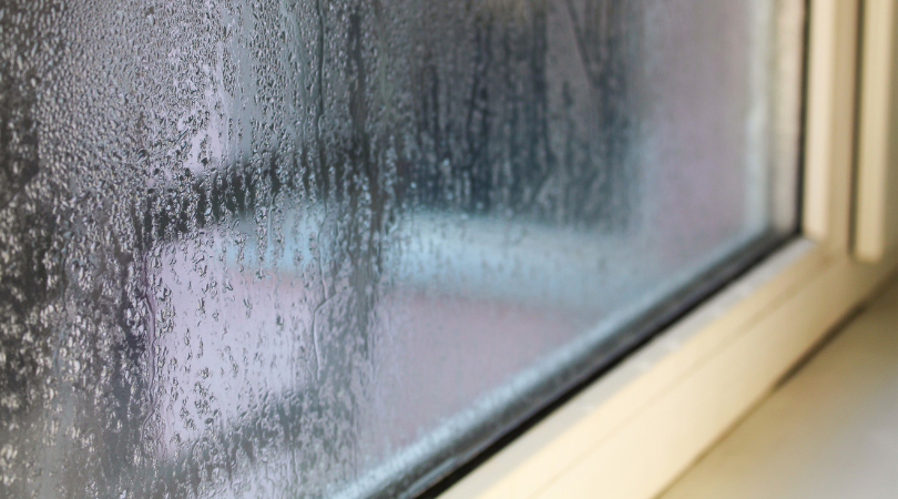 Window Condensation Prevention Tips