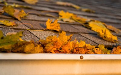 Install a GAF Lifetime Roofing and Get FREE Gutter Protection!