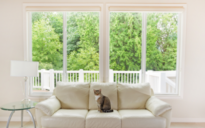 The Benefits of Wood and Vinyl Windows